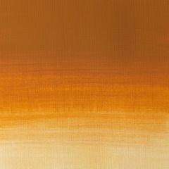 Winsor & Newton Professional Acrylic 60ml Gold Ochre S1