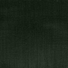 Winsor & Newton Professional Acrylic 60ml Hooker's Green S3