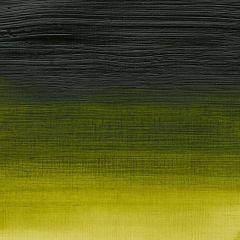 Winsor & Newton Professional Acrylic 60ml Permanent Sap Green S3